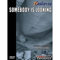 Somebody Is Looking DVD (11735D)