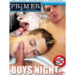 A Boys Night out DVD