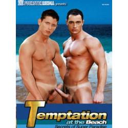 Temptation at the Beach DVD