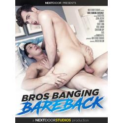Bros Banging Bareback DVD (16157D)