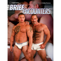 Brief Encounters (Pantheon) DVD