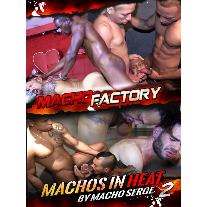 Machos In Heat #2 DVD (16081D)