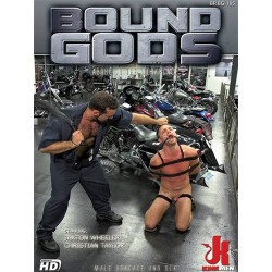 Abuse in The Workplace DVD