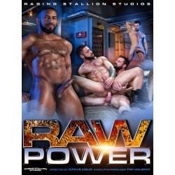 Raw Power (Raging Stallion) DVD (Raging Stallion) (16650D)