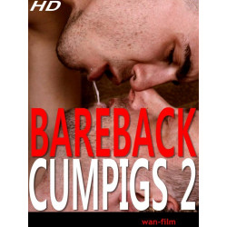Bareback Cumpigs 2 DVD () (07057D)