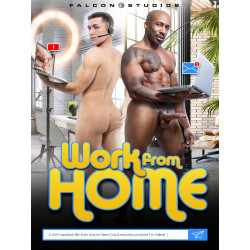 Work From Home DVD (Falcon) (20149D)