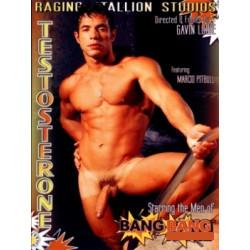 Testosterone DVD (Raging Stallion) (03952D)