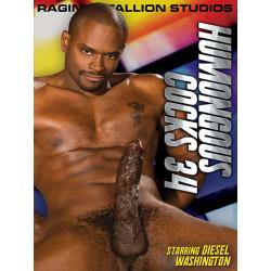 Humongous Cocks 34 DVD