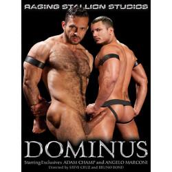 Dominus DVD (Raging Stallion)
