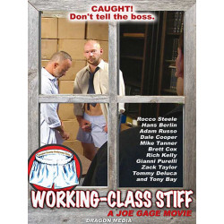 Working-Class Stiff DVD (Joe Gage) (12127D)