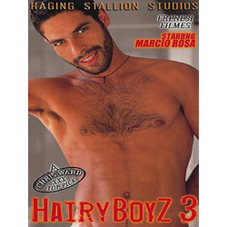 Hairy Boyz 03 DVD (Raging Stallion) (02017D)