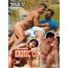 Exotic Cum DVD (14405D)