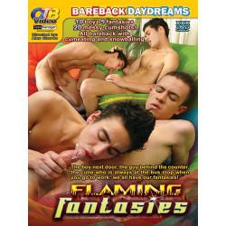 Flaming Fantasies DVD