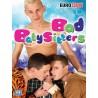 Bad Babysitters DVD (10740D)