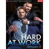 Gentlemen #19: Hard At Work DVD (15289D)