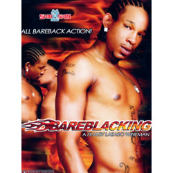 Bareblacking DVD (Skin 2 Skin) (15540D)
