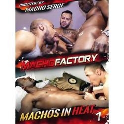 Machos In Heat #1 (Macho Factory) DVD